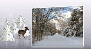 ! CHRISTMAS WHITE 2013